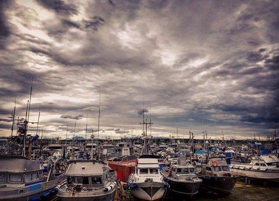 Welcome to the boat yard. Each boat... - Bristol Bay Sockeye Salmon | Facebook