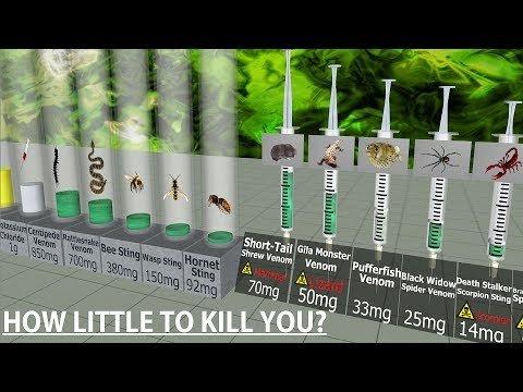 Toxicity Comparison
