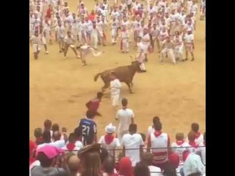 How to Front Flip Over a Charging Bull