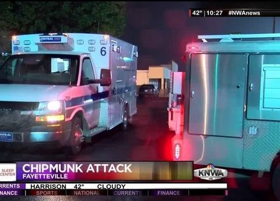 Central EMS Responds to Chipmunk Attack