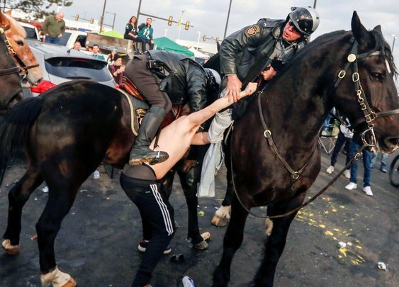 For the second time, a man punched a horse at an Eagles game