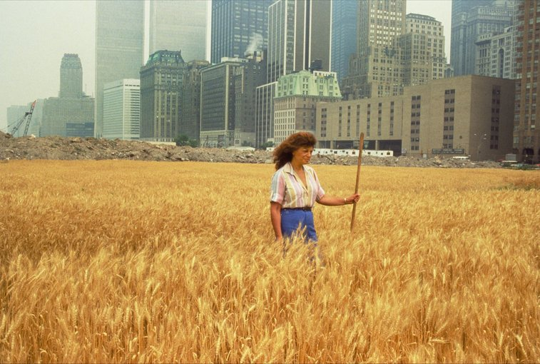 That Time a Wheat Field Grew in Downtown New York