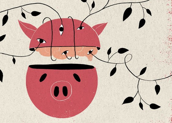 Researchers are keeping pig brains alive outside the body