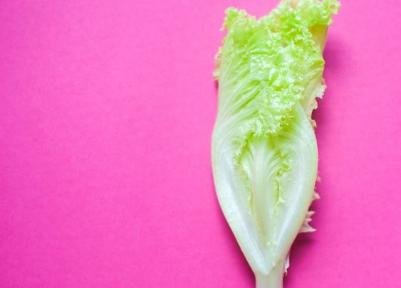 Romaine E. coli outbreak 2018: when is it safe to eat salad again? - Vox