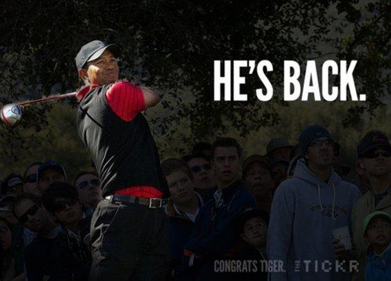 Tiger's Back