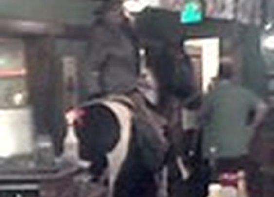 Horsemen Charge Through Shops and Bar, Steal Beer