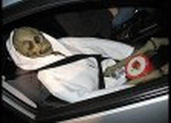 So, HOV lane passengers are supposed to be alive (and real)