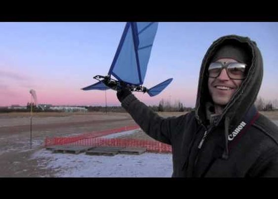 Original SK RC Ornithopter!! - {video} YouTube