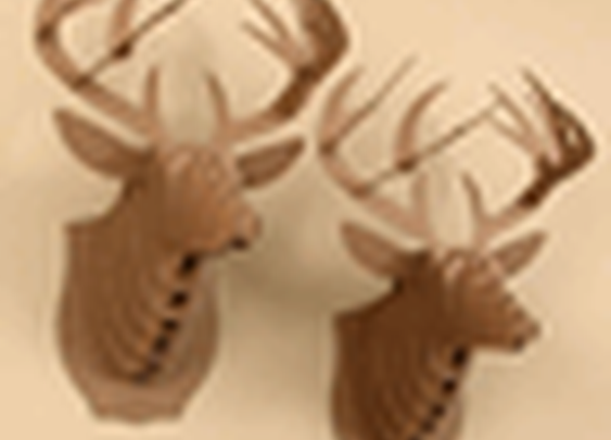 Cardboard Stag/Deer/Buck Mount Eco-Deluxe from Pop Deluxe!