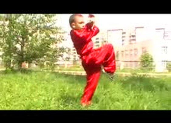 Future Kung Fu Master