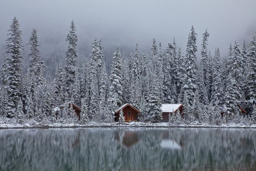 Reviving Manliness, treeroots: Rustic Cabins of Lake O'Hara Lodge in...