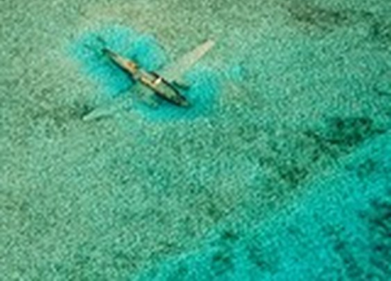 Bahamas Picture – Travel Wallpaper - National Geographic Photo of the Day
