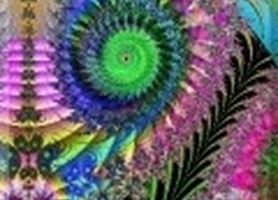 Amazing Seattle Fractals | Fractal Movies & Videos
