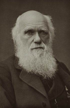 The Complete Work of Charles Darwin Online