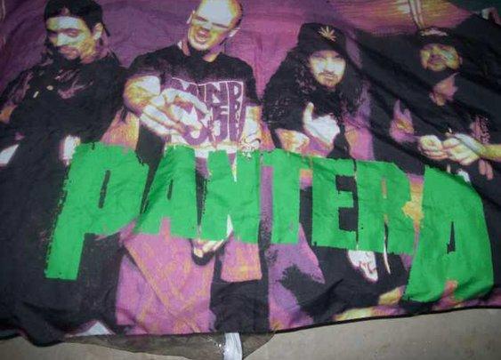 Pantera flag