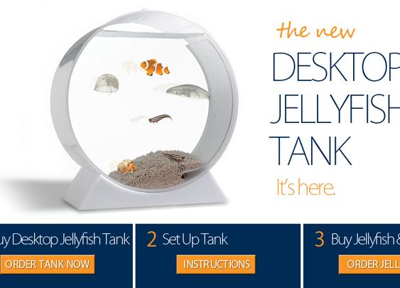 Jellyfish Tanks | Pet Jellyfish, Jellyfish Aquariums, and Accessories