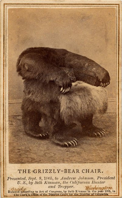 The Grizzly-Bear Chair. A present to President Andrew Johnson from Seth Kinman.