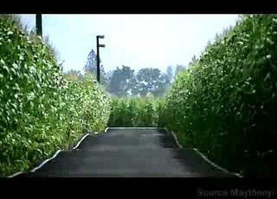 Steve McQueen Mustang Commercial