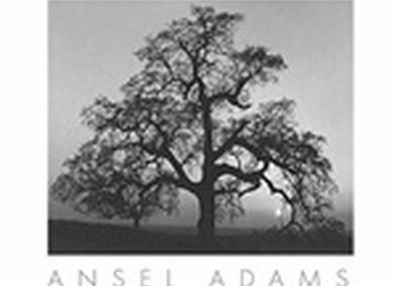 Ansel Adams - Photography