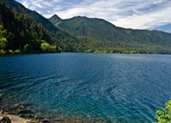 Washington`s Olympic National Park & Forest - Olympicnationalparks.com