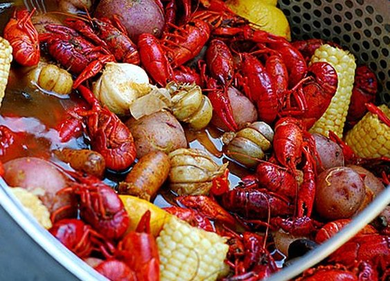 Live mud bugs delivered to your door!