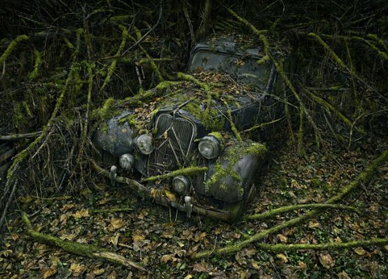 Paradise Parking, Beautiful Photos of Abandoned Cars Decaying in Nature by Peter Lippmann