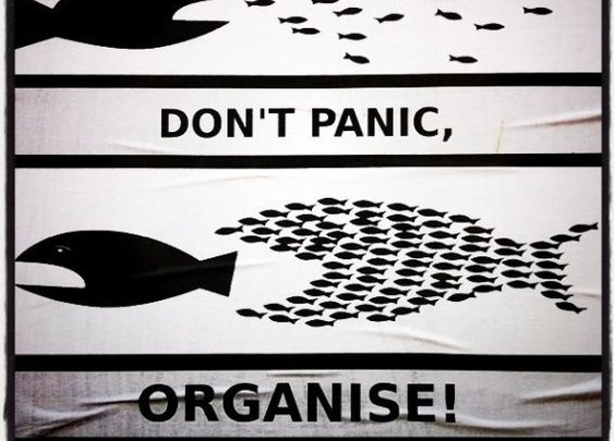 Organizing > panicking