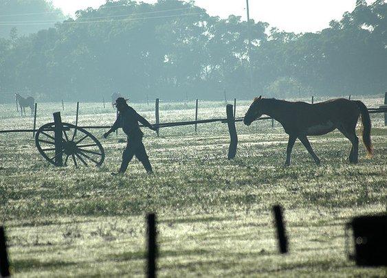 Gaucho in Argentina