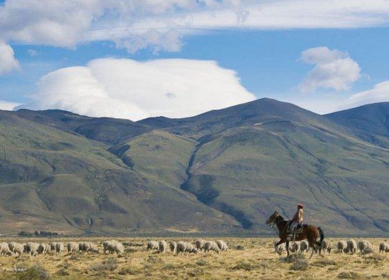 Gaucho - Patagonia