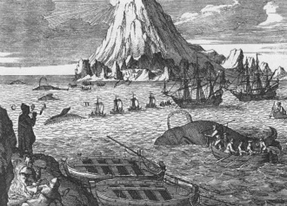 The Spectacular Rise and Fall of U.S. Whaling: An Innovation Story - Derek Thompson - Business - The Atlantic