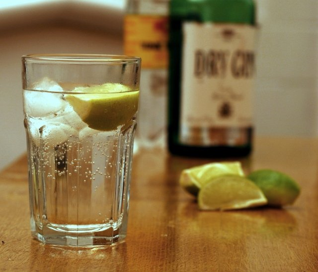 Pairings: Gin and Tonic « The Erstwhile Philistine