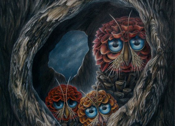 ANYHOOTS  ORIGINAL colored pencil drawing of pinecone by HJMStudio