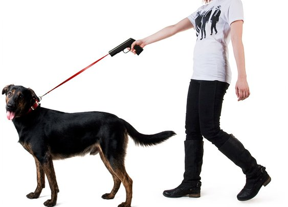 Retractable Dog Snap Leash