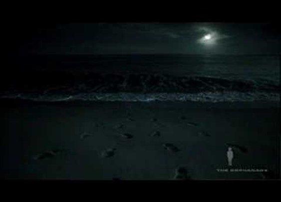 "Navy SEALS ""Footprints"" Commercial (VIDEO)"