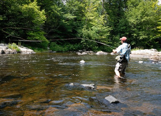 New York Adirondack and western New York fly fishing