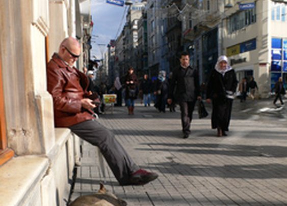 The Smart Set: The Wild Dogs of Istanbul - February 29, 2012