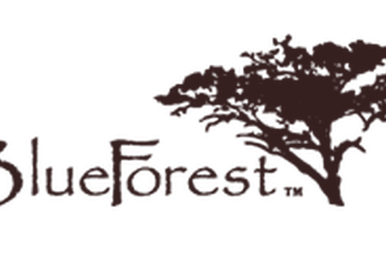 Home / Blue Forest Tree Houses, Eco-lodges and Sustainable Buildings