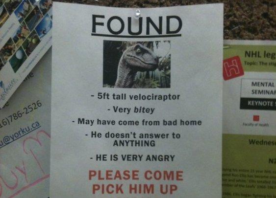 We found your pet velociraptor