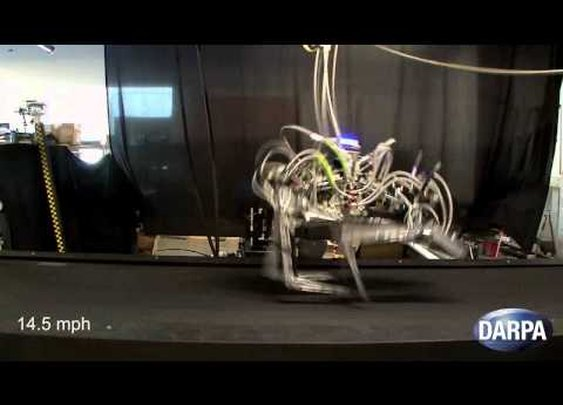 DARPA Cheetah Sets Speed Record for Legged Robots