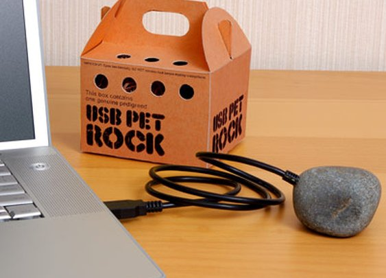 ThinkGeek's USB Pet Rock