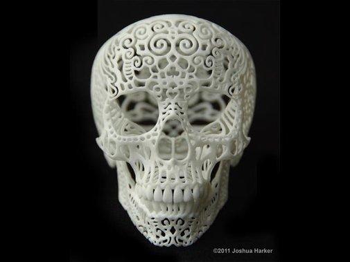 Crania Anatomica