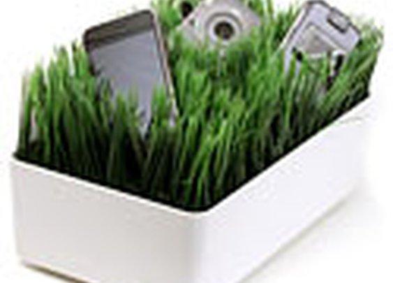 Golfer's Grassy Lawn Charging Station