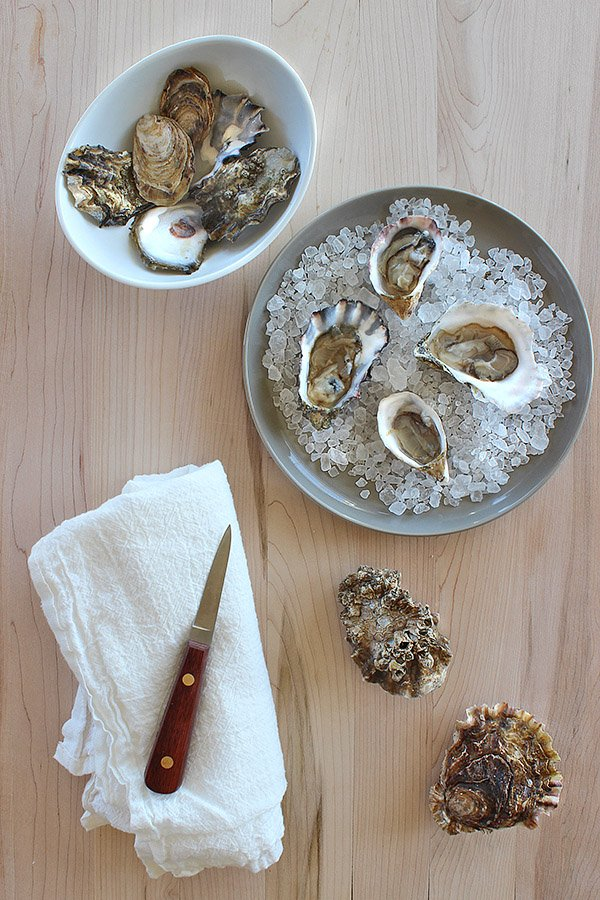 10 Ways to cook with oysters