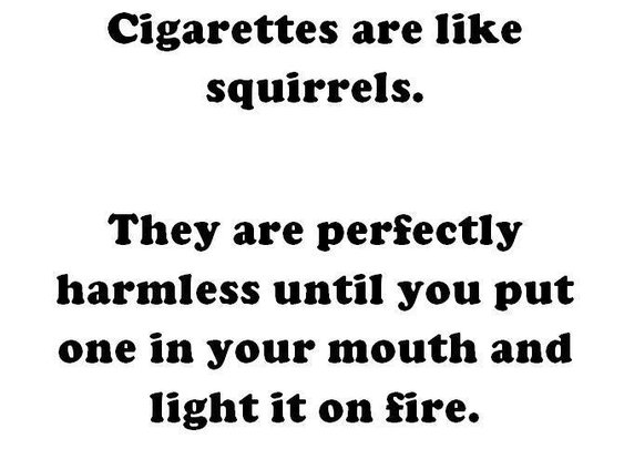 Cigarettes are like squirrels.