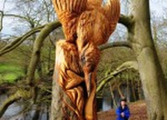 Tommy Craggs, Guerrilla Tree Sculptor