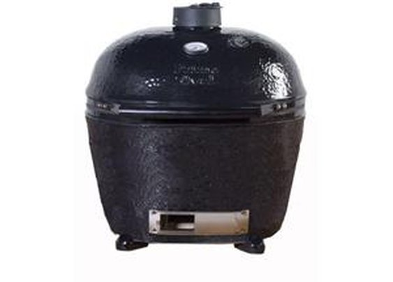 Newegg.com - Primo Ceramic Charcoal Smoker Grill - Extra Large Oval