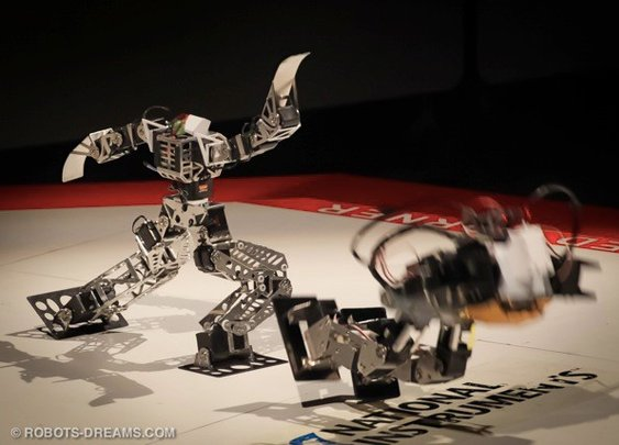 Miniature Ninja Robot Gladiators?....... Im in! -Video