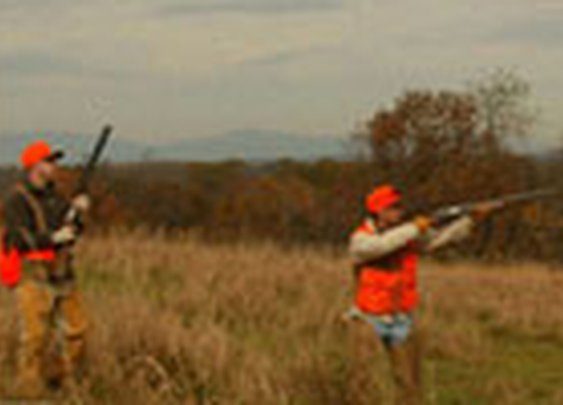 Wingshooting USA | Search for Bird Hunting Preserves