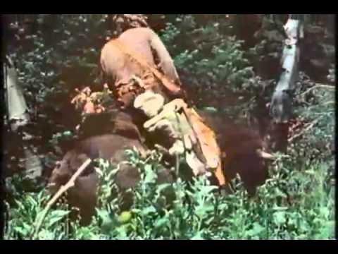 Guy On A Buffalo