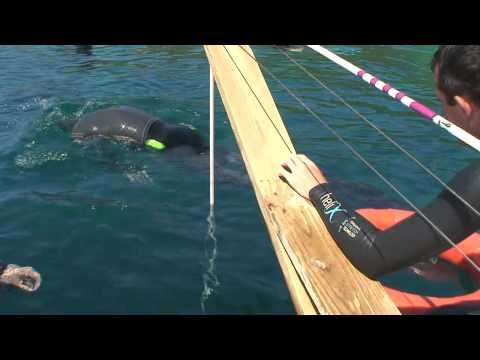 Freediving World Record no fins 88m (288ft)      - YouTube